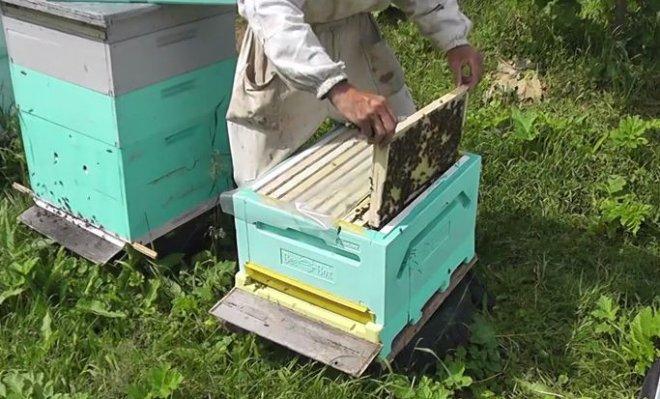 Самоделки для пчеловодства своими руками 199