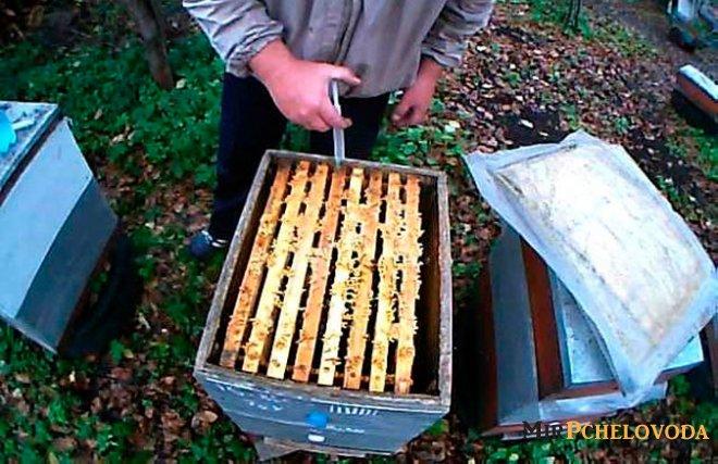 Бипин для пчел — инструкция по применению